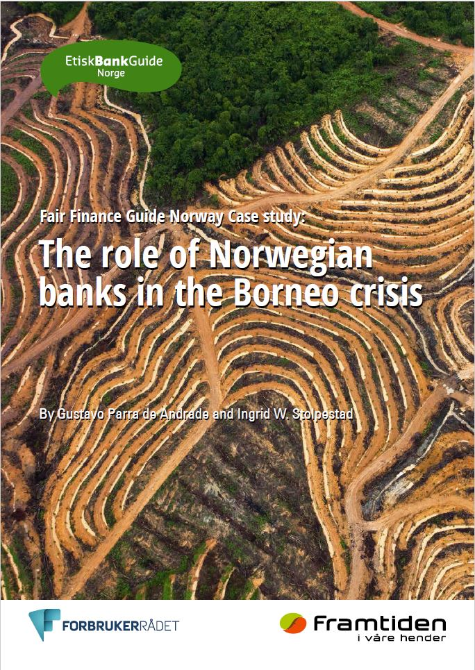 The role of Norwegian banks in the Borneo crisis