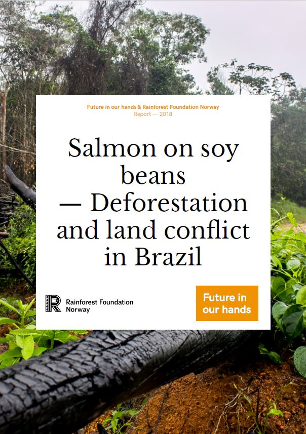 Salmon on soy beans deforestation and land conflict in Brazil